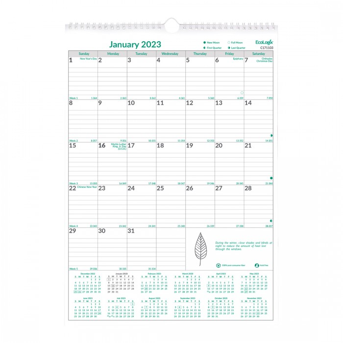 EcoLogix Monthly Wall Calendar 2021
